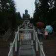大仏殿までの心臓破りの階段(笑)