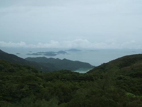 大仏殿から海を眺む